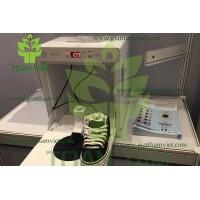 Dịch vụ giặt giày