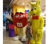 Dịch vụ giặt mascot